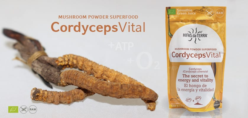 Cordycepsvital