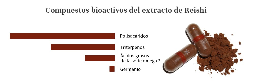 Compuestos bioactivos Mico Rei extracto de Reishi