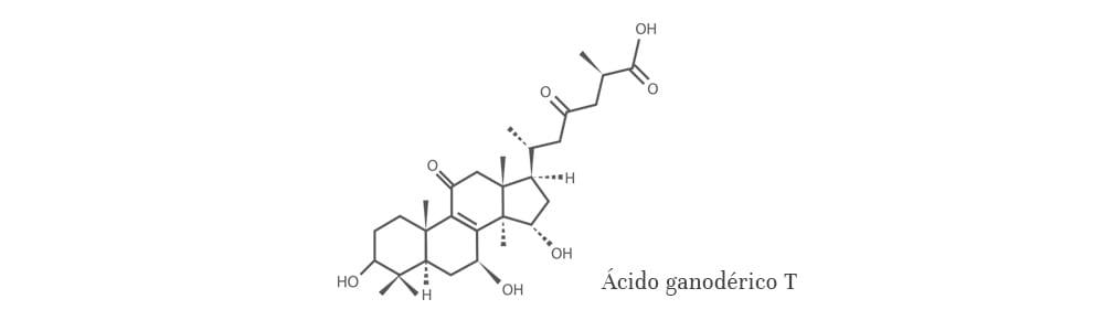 Ácido ganodérico T