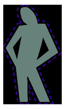 Las mayoría de las células inmunitarias están en el intestino